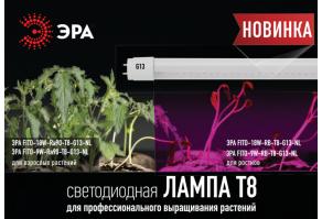 Новинка: светодиодные линейные фитолампы ЭРА Т8