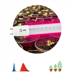 ЭРА Лампа красно-синего спектра FITO-18W-RB-Т8-G13-NL (25/700)
