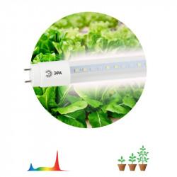 ЭРА Лампа полного спектра FITO-9W-Ra90-Т8-G13-NL (25/1050)